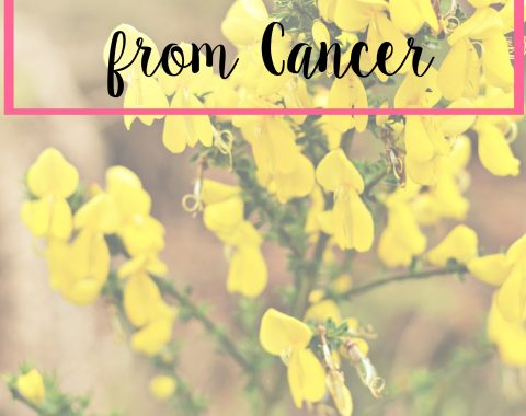 11 Lessons Learned from Cancer. A list of things I learned while fighting cancer when I was 16 years old that I still carry with me now // Life with Rosie