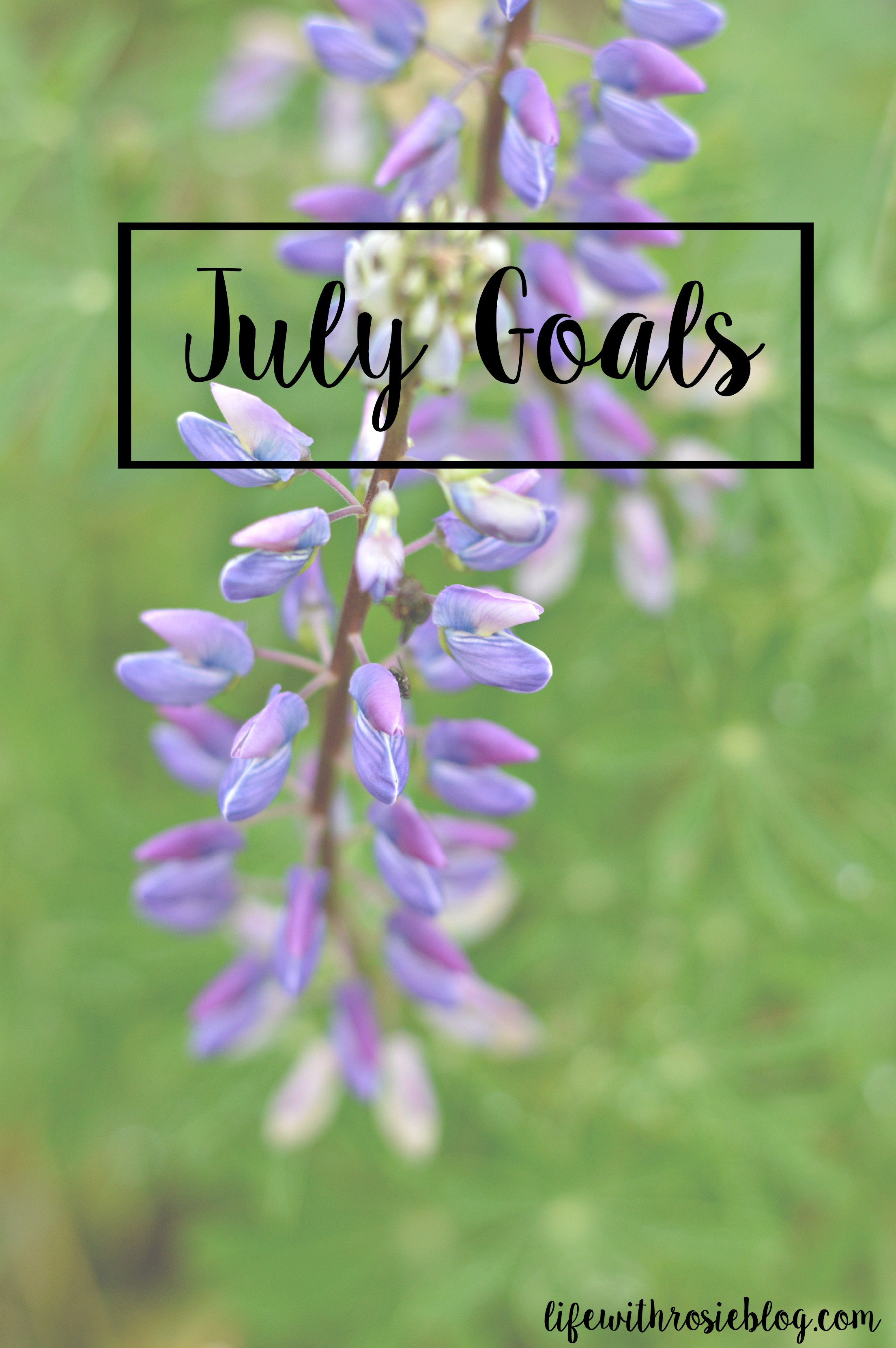 July Goals // Life with Rosie