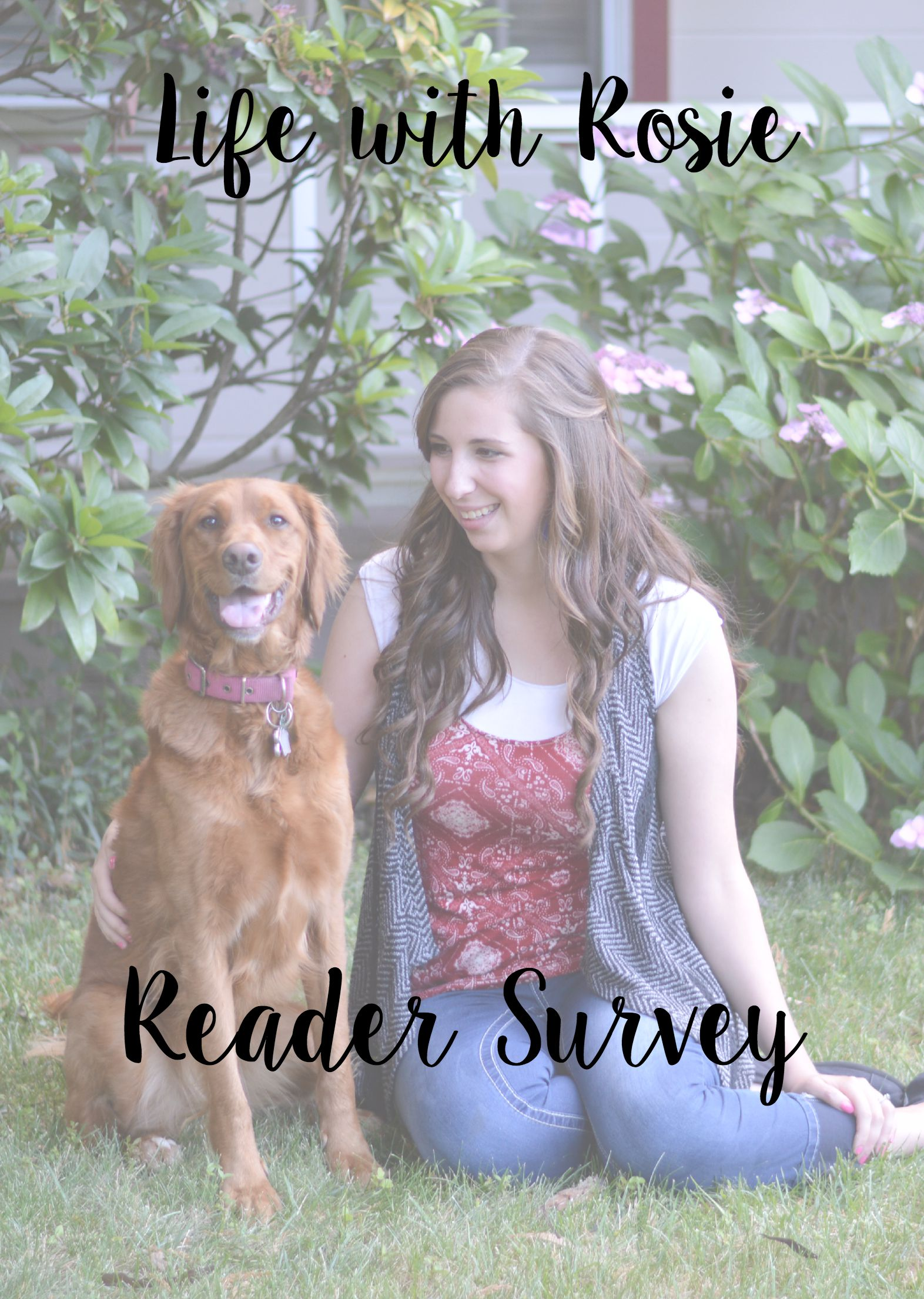 Reader Survey for LWR // Life with Rosie