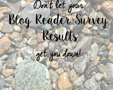 Don't let your Blog Reader Survey Results get you down // Life with Rosie