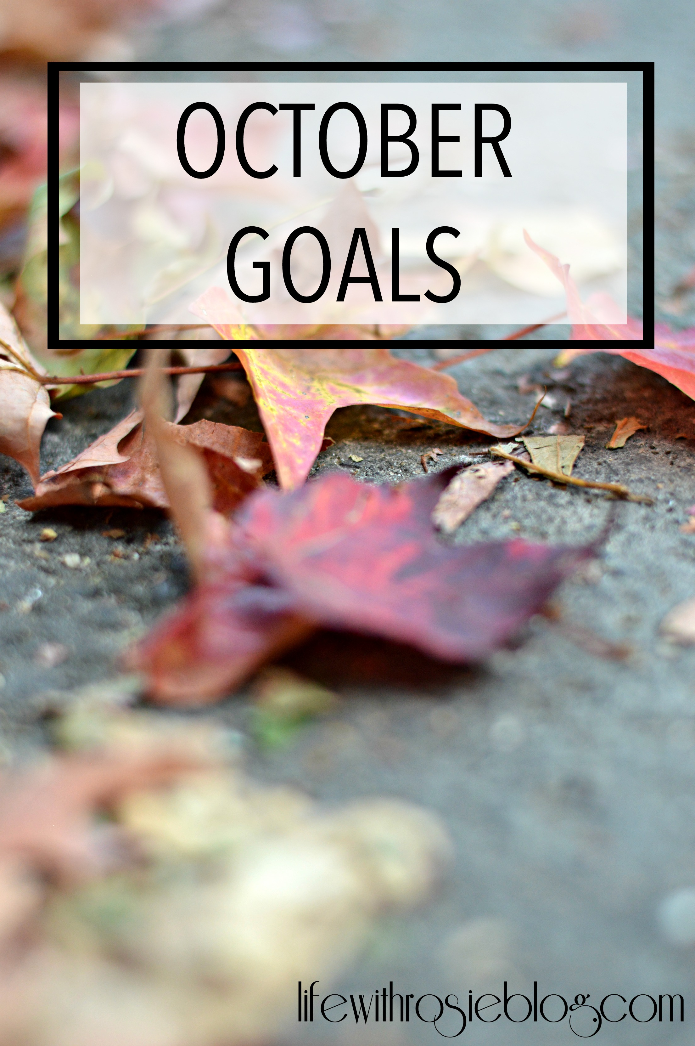 October Goals // Life with Rosie