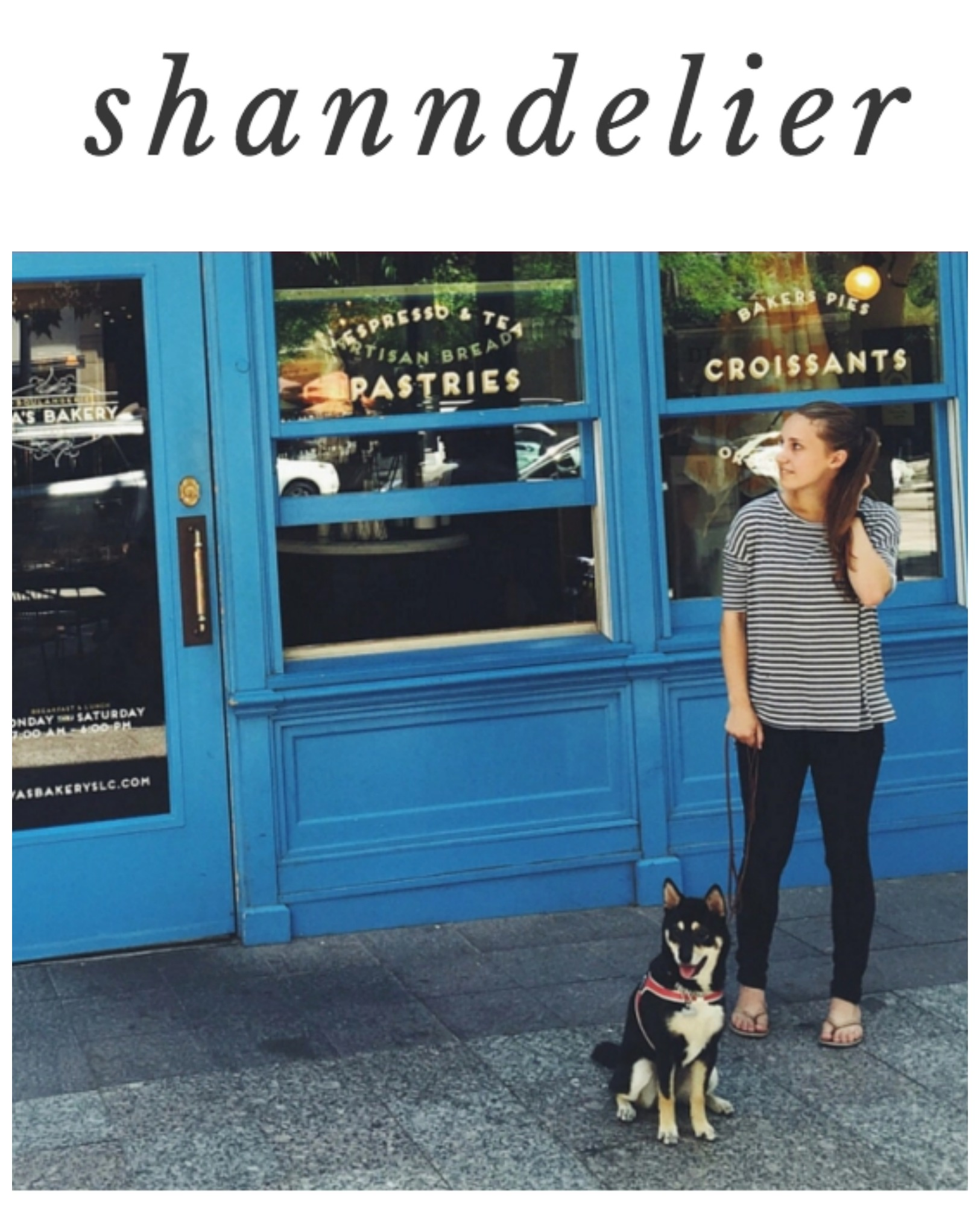 Blogs that Inspire me: Shanndelier // Life with Rosie