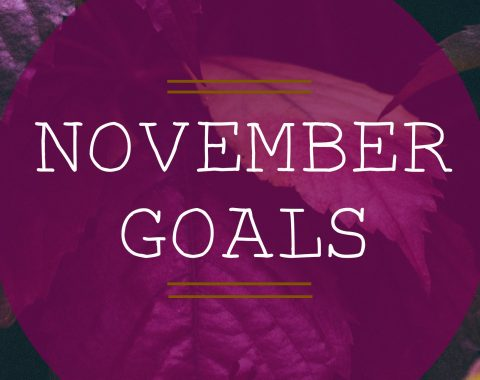 November Blog Goals // Life with Rosie