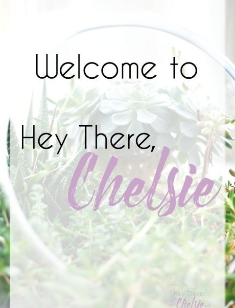 Welcome to Hey There, Chelsie (formally known as Life with Rosie) // www.heytherechelsie.com