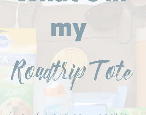 Going on a road trip this summer? Here is a complete list of all my road trip essentials for a successful trip, including treats for the dog and Extra Gum 35 pack so that I can stay awake at the wheel. #ad #GIVEEXTRAGETEXTRA #target