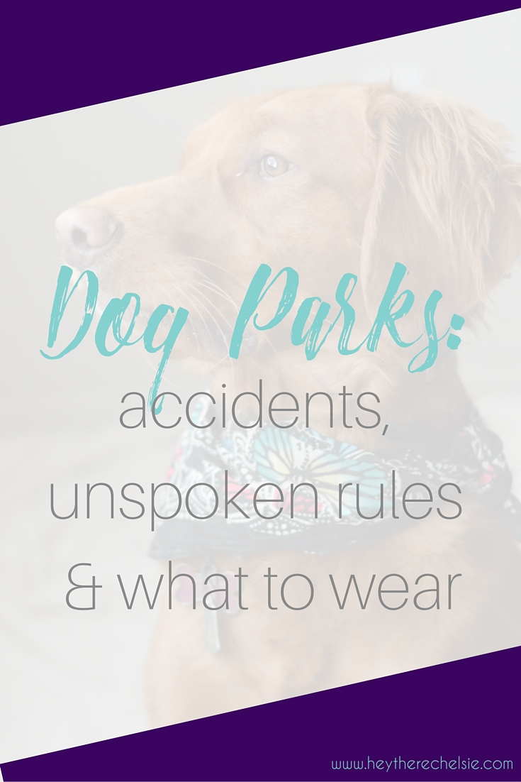 Dog Parks: accidents, unspoken rules & what to wear. I'm opening up about the recent accident Rosie had at the dog park that resulted in 17 stitches, sharing my thoughts on dog parks and the unspoken rules everyone should follow and what to wear when you go! // heytherechelsie.com #ad
