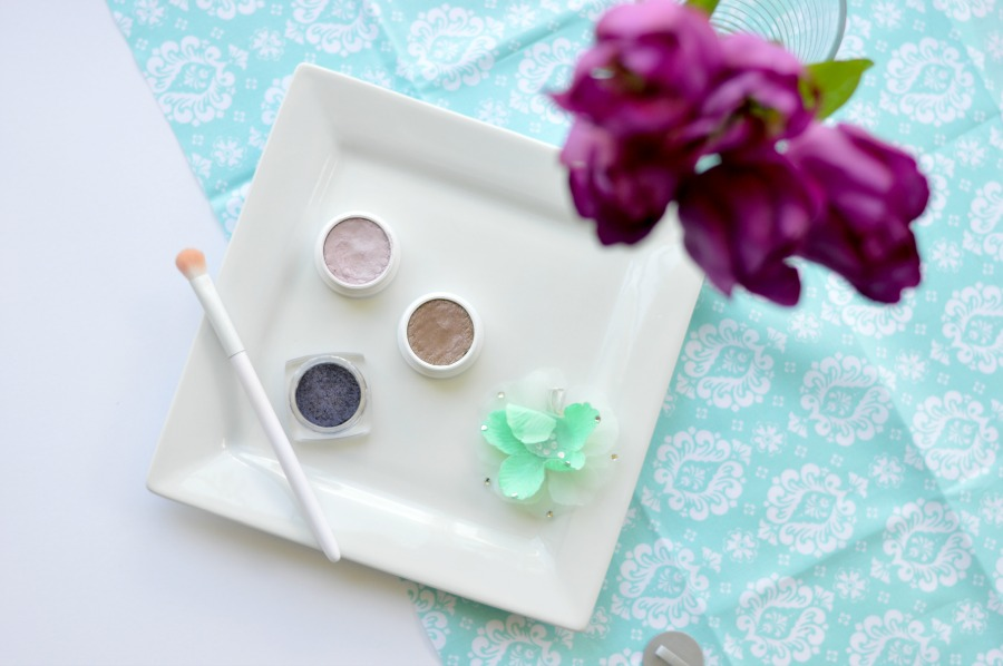 Project Pan: A challenge for the makeup addict who doesn't want to stop buying makeup and who also wants to use the makeup she already has! Pick 5 Products and hit pan in 5 months! Get the full details here! // Hey There, Chelsie
