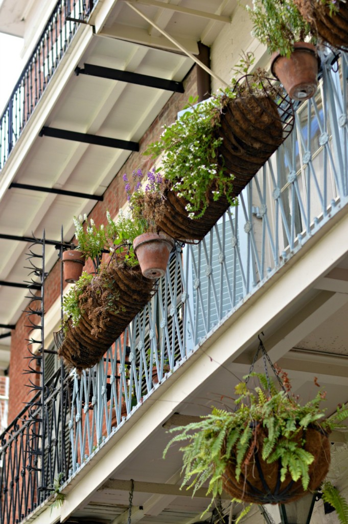 The Ultimate Day Guide to New Orleans French Quarter // Hey There, Chelsie. Planning on a trip into downtown New Orleans? Here's a complete guide on what to see, what to eat, and where to stay! New Orleans is a fun and vibrant city, full of history and culture! Don't miss out on the chance to explore the French Quarter!
