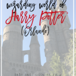 The Ultimate Guide to the Wizarding World of Harry Potter (Orlando) – Part One