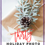 The #myvibrantholiday Challenge + 30 Holiday Photo Ideas for Instagram