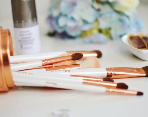 Morphe Copper Dreams Bush Set Review // Hey There, Chelsie