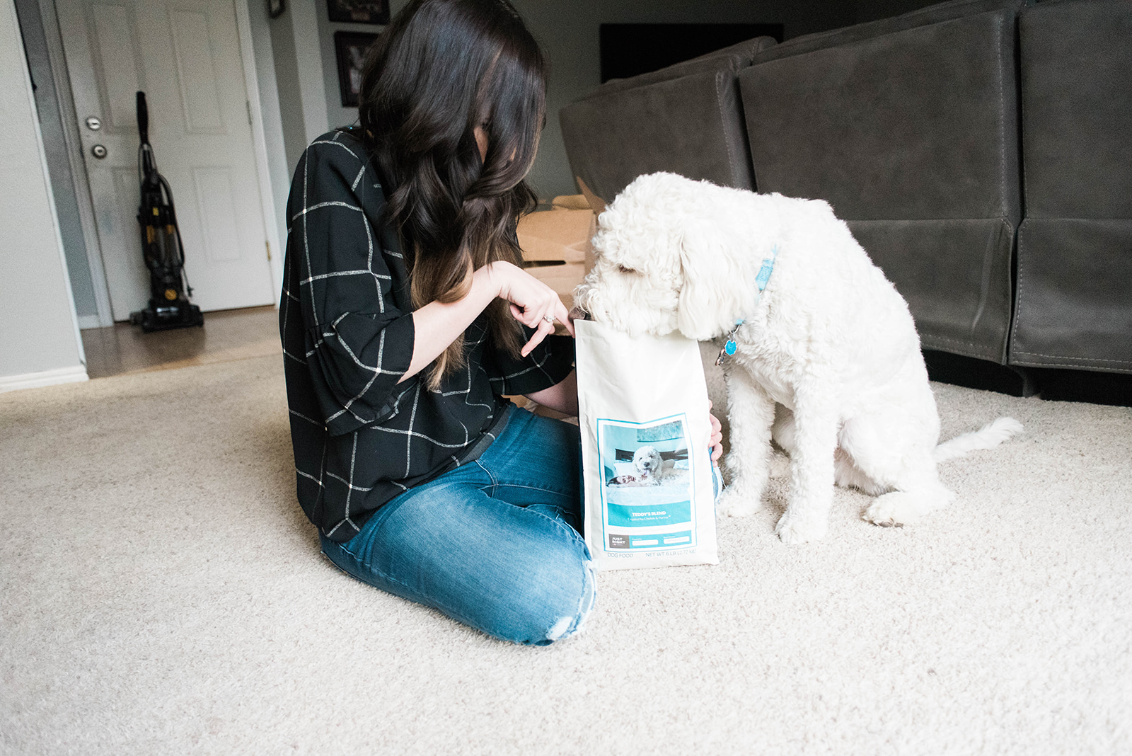 How to Choose Kibble for your Dog // Hey There, Chelsie