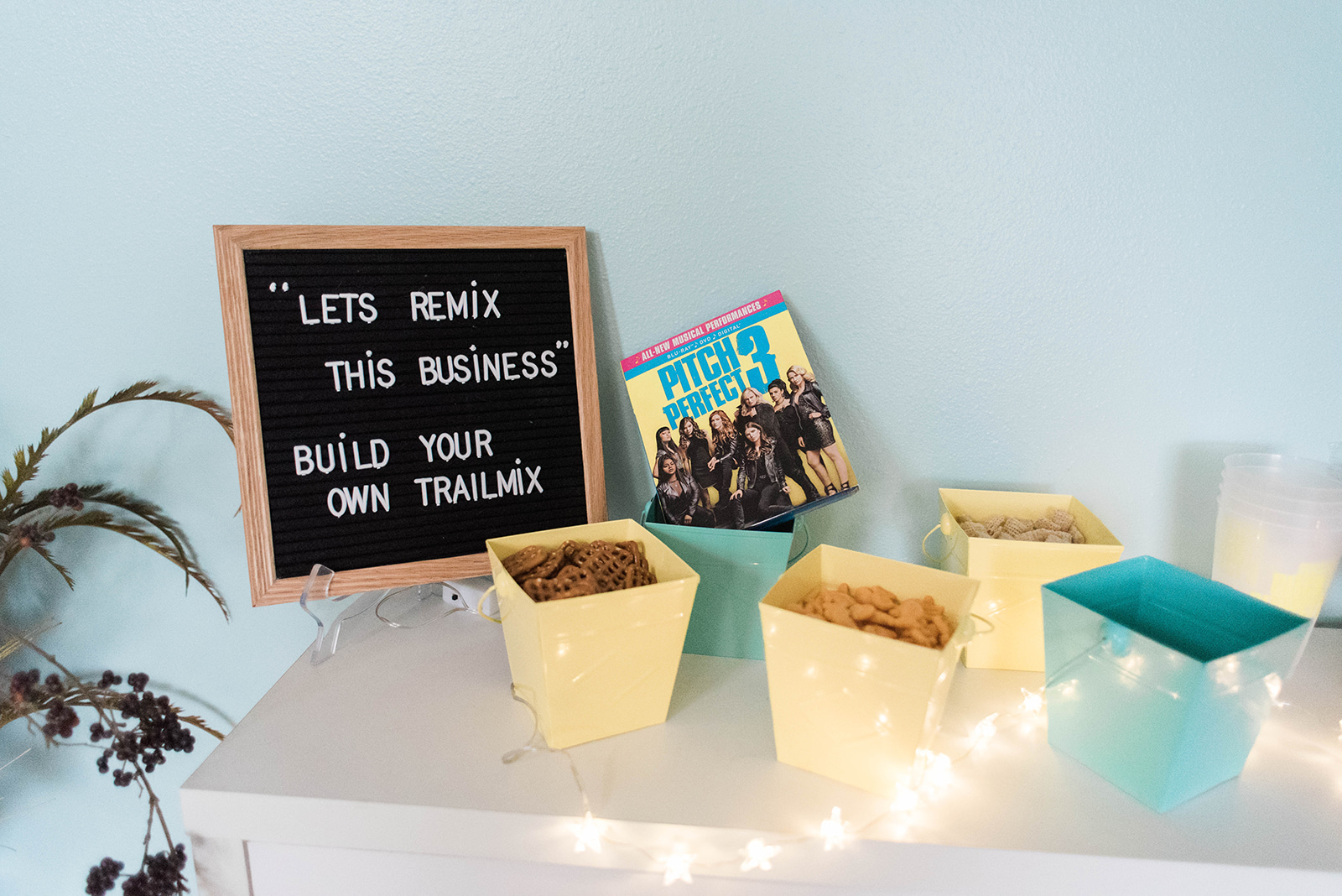 Pitch Perfect Themed Birthday Party - adult birthday party idea // Hey There, Chelsie