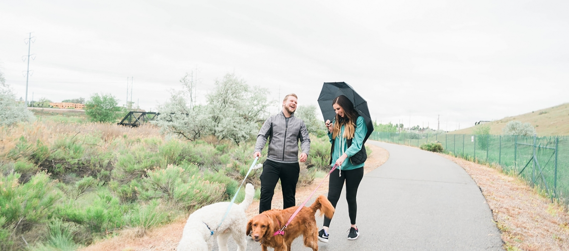15 Things to Do with your Dog this Summer