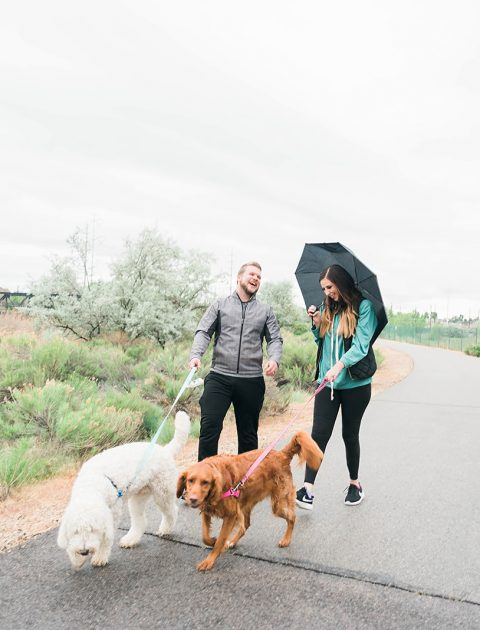 15 Things to Do with your Dog this Summer - Hey There, Chelsie | A Salt Lake City Lifestyle Blog