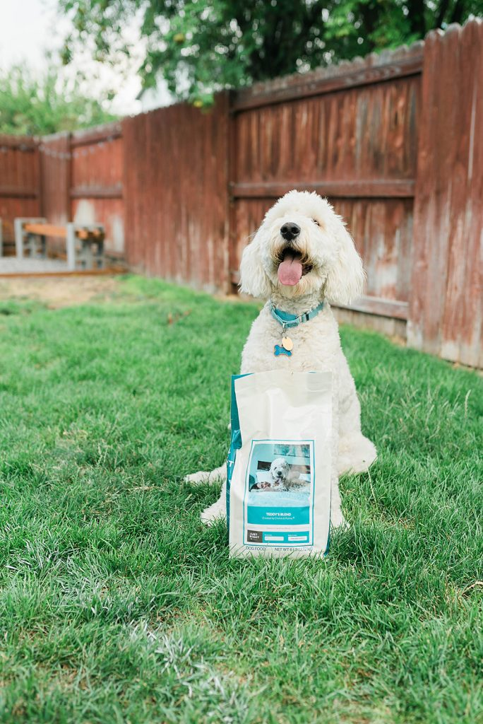 How to promote good joint health in your dog - Just Right by Purina // Hey There, Chelsie
