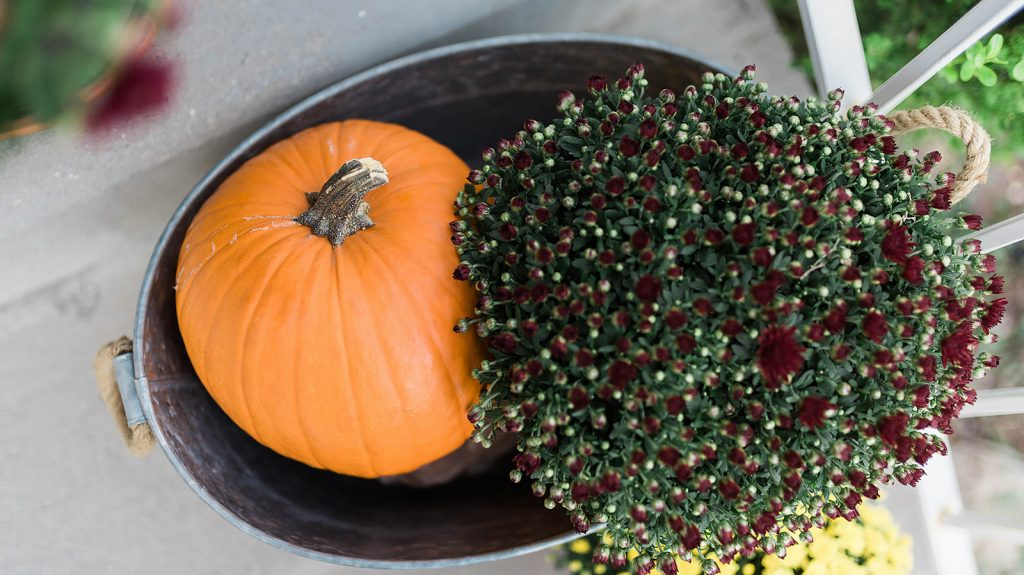 How to Decorate Your Porch for Fall with Mums // Hey There, Chelsie