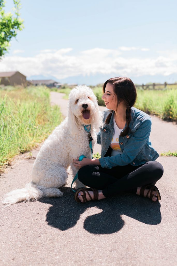 Q&A With Purina Veterinarian  // Hey There, Chelsie