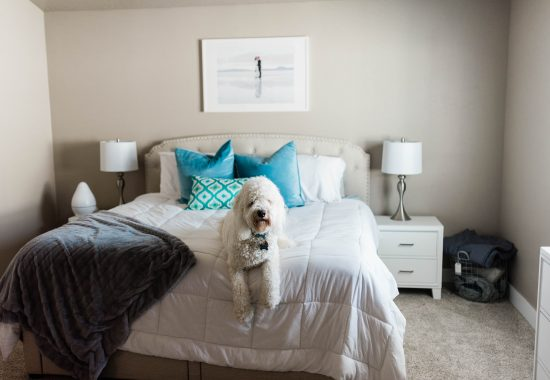 Relaxing Master Bedroom on a Budget - featuring Utah Furniture Deals // Hey There, Chelsie