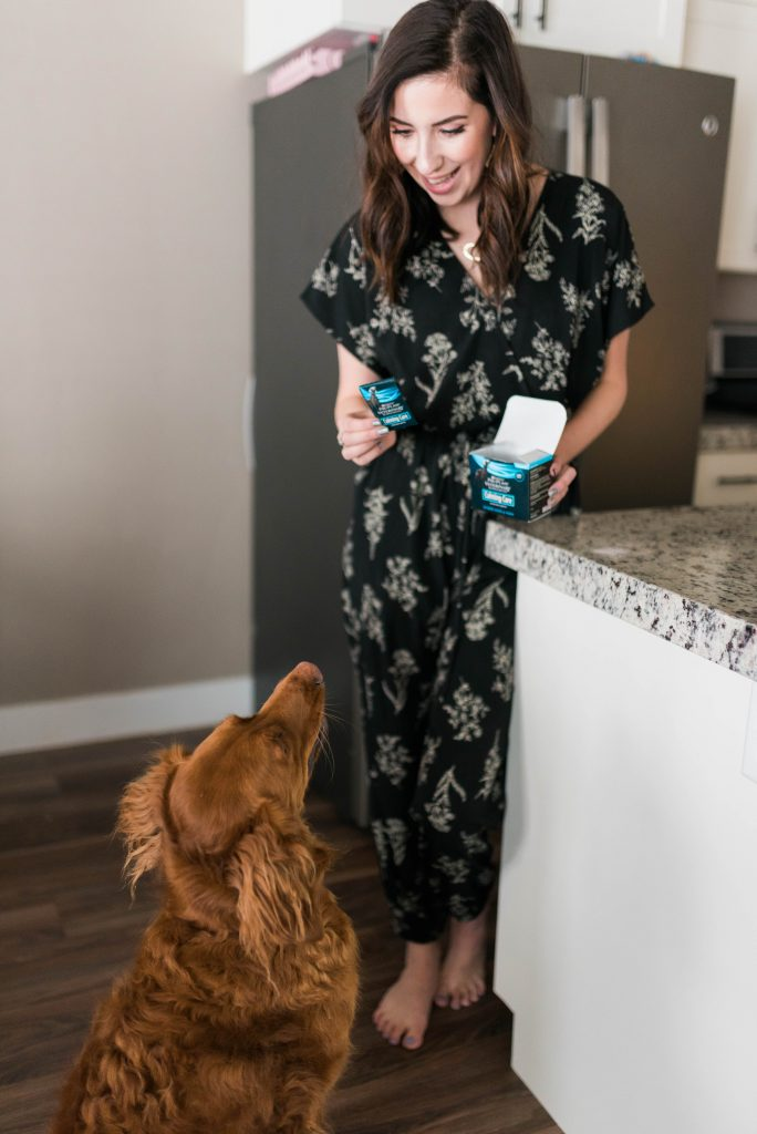 How to Help An Anxious Dog featuring Calming Care by Purina ProPlan// Hey There, Chelsie